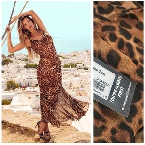 Sexy Brown semi sheer Leopard Maxi dress